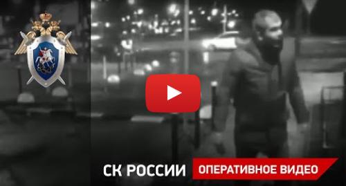 Youtube пост, автор: Следственный комитет Российской Федерации: О расследовании уголовного дела об убийстве следователя Шишкиной